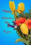 Greeting card with the Valentine`s Day royalty free stock image