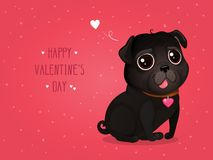 Greeting card for Valentine`s Day with a cute black pug. Cartoon black dog with heart. Vector illustration for a postcard or a poster. Text `Happy Valentine`s Royalty Free Illustration