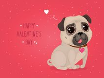 Greeting card for Valentine`s Day with a cute pug. Cartoon dog with heart. Vector illustration for a postcard or a poster. Text `Happy Valentine`s Day Vector Illustration