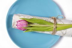Greeting card for Valentine`s day. Decoration of the wedding table. On a blue plate a napkin with a tulip, beautifully tied. Royalty Free Stock Photos
