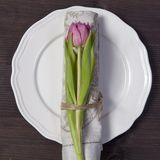 Greeting card for Valentine`s day. Decoration of the wedding table. On a white plate a napkin with a tulip, beautifully tied. Woo Stock Images