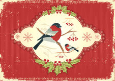 Greeting card.Vintage christmas image Royalty Free Stock Image