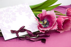 Greeting card with violet tulips Stock Images