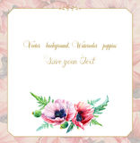 Greeting card with watercolor pink poppies. Stock Photos