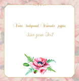 Greeting card with watercolor pink poppies. Stock Image
