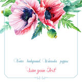 Greeting card with watercolor pink poppies. Royalty Free Stock Images