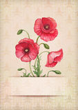 Greeting card with watercolor poppy flowers Stock Images