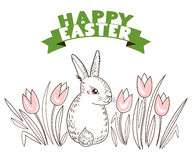 Greeting card with with white Easter rabbit and tulips, flowers. Funny bunny Royalty Free Stock Image