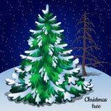 Greeting Card With Christmas Tree Closeup Stock Photo