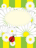 Greeting card wth ladybird Stock Photography