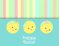 Greeting card with with yellow Easter chicken. Stock Images
