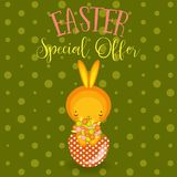 Greeting cards. Cute Easter bunny,  eggs, flowers Stock Image