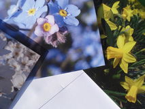 Greeting cards and envelopes Stock Photos