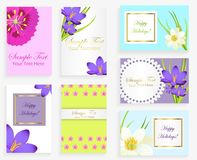 Greeting Colorful Cards with Flowers and Text Set. Greeting colorful cards with flowers and space for text and wishes vector collection. Decorated postcards for Stock Photo