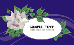 Greeting frame. Vector drawing of the greeting frame decorated with magnolia flower Stock Image