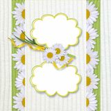 Greeting frame with daisy Royalty Free Stock Photo