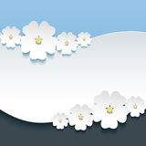 Greeting or invitation card with 3d flowers sakura Stock Photo