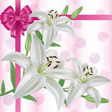 Greeting or invitation card with flower lily Stock Photos