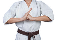 Greeting in martial arts Stock Photos