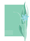 Greeting or post card with blue flower. Place text Royalty Free Stock Photos
