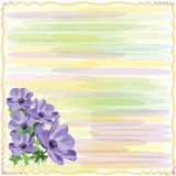 Greeting Striped Floral Card With Anemone Stock Images