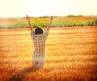 Greeting to the Sun in wheat field (sunset) Stock Photos