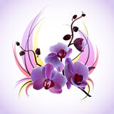 Greeting vector card with orchids Stock Photo