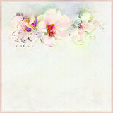 Greeting vintage card in pastel colors with spring flowers. On hazed background with frame Royalty Free Stock Images