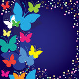 Greetings card with butterflies Royalty Free Stock Photos