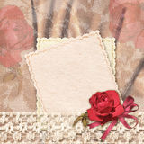Greetings card with rose and lace Royalty Free Stock Photo