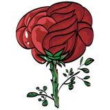 Greetings festive beauty mark rose vektor Royalty Free Stock Photos