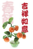 Greetings with Tangerine Plant Stock Photography