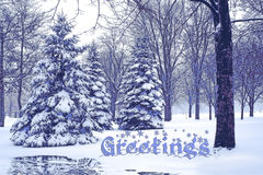 Greetings winter. Royalty Free Stock Image