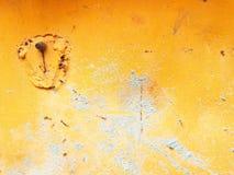 greey på apelsinen Royaltyfri Foto