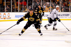 Greg Campbell Boston Bruins Stock Image