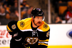 Greg Zanon Boston Bruins Stock Image