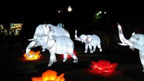 Gregge degli elefanti bianchi Immagini Stock Libere da Diritti