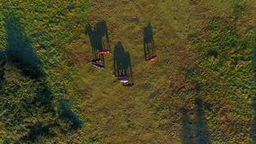 Gregge dei cavalli su un prato, vista da sopra video d archivio