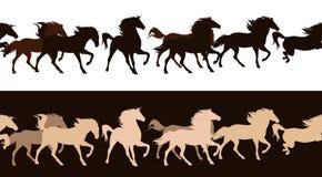 Gregge del cavallo Immagini Stock