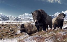 Gregge della Buffalo royalty illustrazione gratis