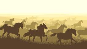 Gregge orizzontale dell'illustrazione dei cavalli. royalty illustrazione gratis