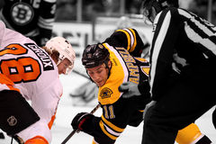 Gregory Campbell v. Claude Giroux. Gregory Campbell of the Boston Bruins takes a face off with Philadelphia Flyers center Claude Giroux Royalty Free Stock Photos
