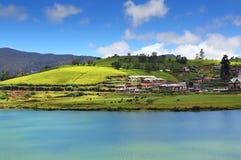 Gregory See in Nuwara Eliya - Sri Lanka Stockfotos
