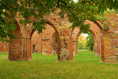 Greifswald Abbey Royalty Free Stock Photo
