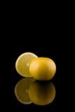 grejpfruty Fotografia Stock