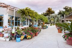Grek Taverna i Volos, Grekland Royaltyfri Bild