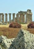 grek zostaje selinunte świątynię Obrazy Stock