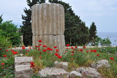 Grekisk kolonn och utgrävningar på samos arkivfoto