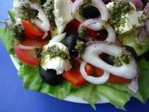 grekisk sallad Arkivfoton