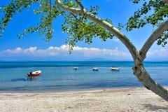 Grekisk strand på ön av Korfu i det medelhavs- Royaltyfria Bilder